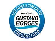 Meteorologia Gustavo Borges